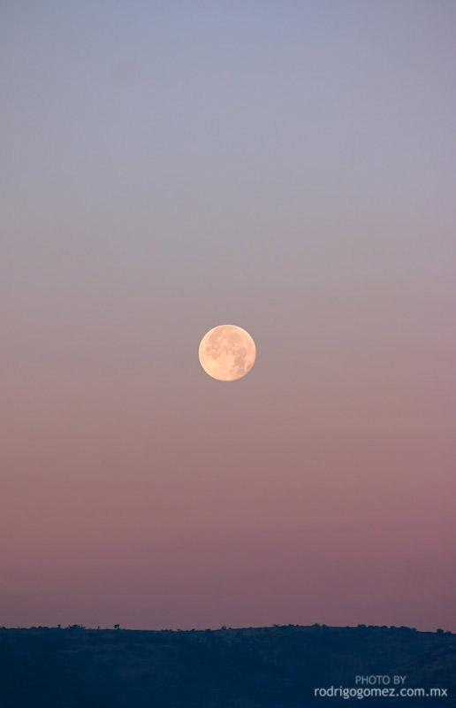 Luna llena en la mañana