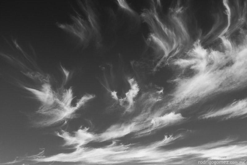 Sky Ghosts I