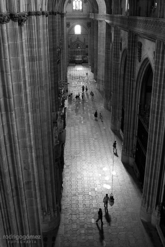Catedral de Salamanca I