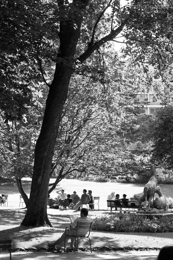 Jardines de Luxemburgo II
