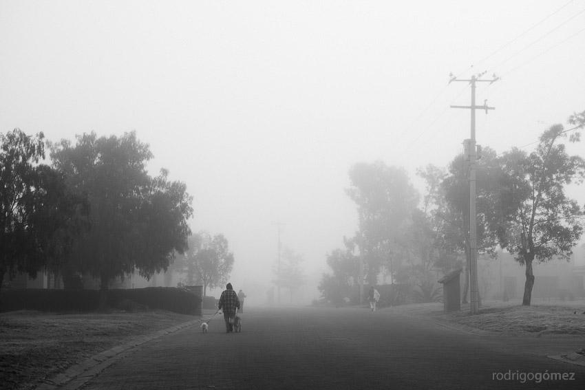 A gray day I