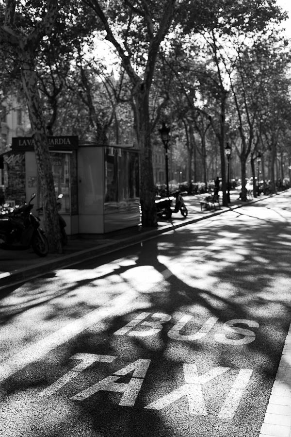 Taxi Bus - Barcelona