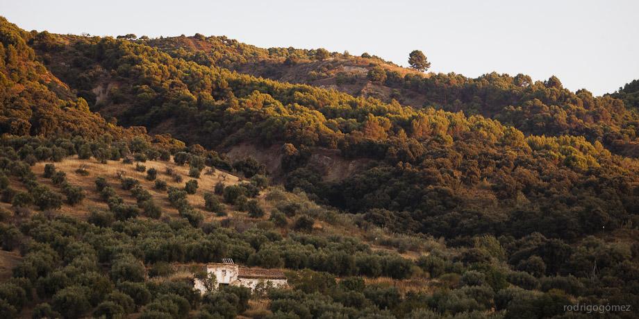 Cerros en Granada al Atardecer - Granada
