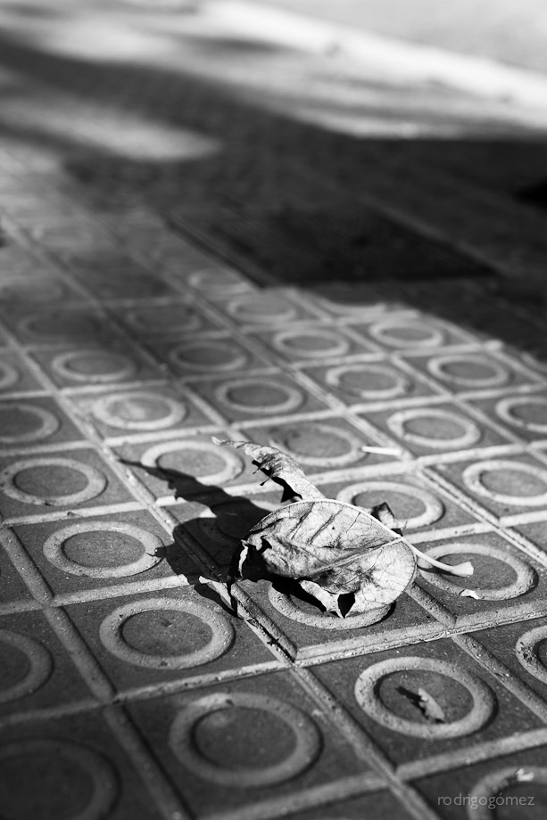 Untitled XXV - Barcelona