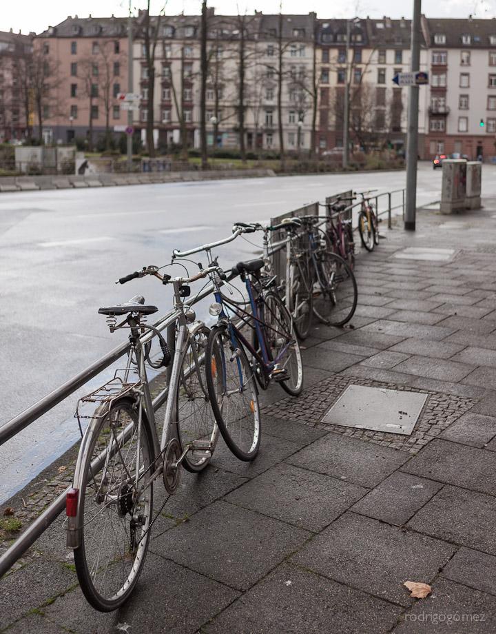 El camino y las bicis - Frankfurt, Alemania